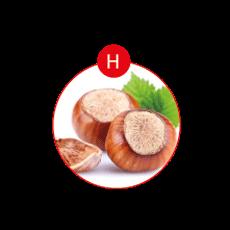 H – Schalenfrüchte